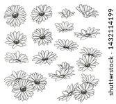 set of flowers in various... | Shutterstock .eps vector #1432114199