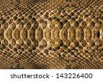 background snake skin. | Shutterstock . vector #143226400