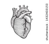 hand drawn human heart drawing...   Shutterstock .eps vector #1432403153