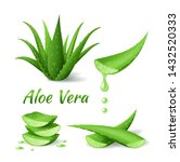 set of aloe vera  realistic... | Shutterstock .eps vector #1432520333