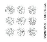 vector set design templates and ... | Shutterstock .eps vector #1433043266