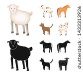 vector illustration of breeding ... | Shutterstock .eps vector #1433313926