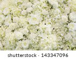 Stock photo fresh flower backgroung with white rose 143347096