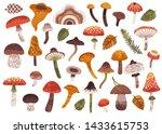 vector autumn set with cute... | Shutterstock .eps vector #1433615753