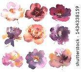 floral set. collection with... | Shutterstock . vector #1434338159