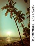 beautiful sunset at tropical... | Shutterstock . vector #143471260
