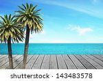 beautiful sea view and palm... | Shutterstock . vector #143483578