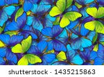 Butterfly Morpho. Wings Of A...