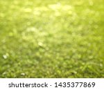 green circle bokeh summer... | Shutterstock . vector #1435377869
