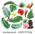 big collection of tropical... | Shutterstock .eps vector #1435797206