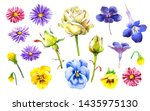 watercolor with pansies ... | Shutterstock . vector #1435975130