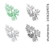 vector illustration of dill and ... | Shutterstock .eps vector #1436269076