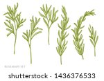 vector set of hand drawn pastel ... | Shutterstock .eps vector #1436376533