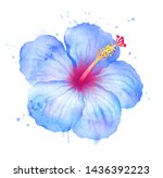 watercolor hand drawn... | Shutterstock . vector #1436392223