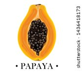isolated papaya on white... | Shutterstock .eps vector #1436418173
