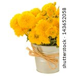 Bouquet Of Yellow Mums In Pot...
