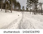 Snow Covered Hiking Trail With...