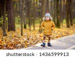 Little Boy During Stroll In A...