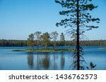 island with trees in lake...