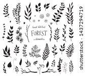 vector set of black leaves  ...   Shutterstock .eps vector #1437294719