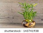 Bamboo In Vase