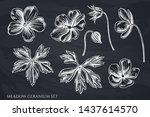 vector set of hand drawn chalk... | Shutterstock .eps vector #1437614570
