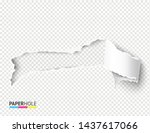 Vector Realistic Blank Torn...