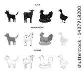 vector design of breeding and... | Shutterstock .eps vector #1437918200