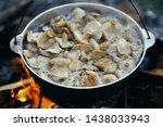 Fragrant Food Mushrooms Nature...