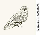 cute owl | Shutterstock .eps vector #143807080