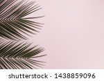 flat lay of tropical leaves... | Shutterstock . vector #1438859096