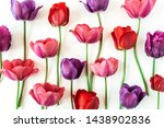 Colorful Tulip Flowers On Whit...