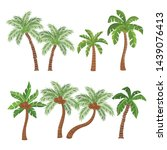 palm  and coconut trees... | Shutterstock .eps vector #1439076413