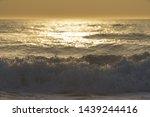 golden beautiful hot sunset... | Shutterstock . vector #1439244416