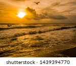 Seascape Of Two Sea Gulls In...