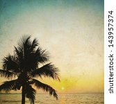 coconut palm tree silhouetted... | Shutterstock . vector #143957374