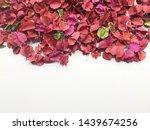 Colourful Potpourri On White...
