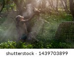 man cleaning thai gamecock and... | Shutterstock . vector #1439703899