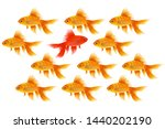 One Red Fish Swims Backwards....