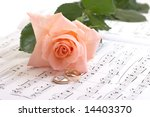 rose  rings and notes on a... | Shutterstock . vector #14403370