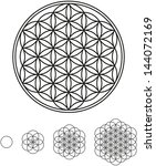 flower of life development | Shutterstock .eps vector #144072169
