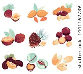 isolated  vector coloured set... | Shutterstock .eps vector #1441162739