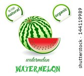 watermelon | Shutterstock .eps vector #144119989