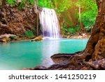 beautiful waterfall with tree...   Shutterstock . vector #1441250219