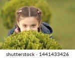 girl cute kid green grass... | Shutterstock . vector #1441433426