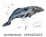 watercolor painting of animal   ... | Shutterstock . vector #1441621613