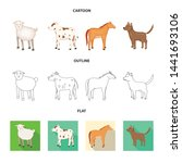 isolated object of breeding and ... | Shutterstock .eps vector #1441693106
