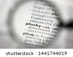 Small photo of The word or phrase Plucky in a dictionary