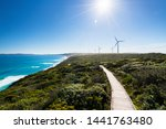 The Albany Wind Farm Is One Of...