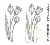Tulip Flower Graphic Sketch...